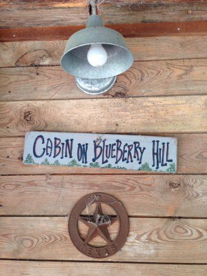 Cabin on Blueberry Hill