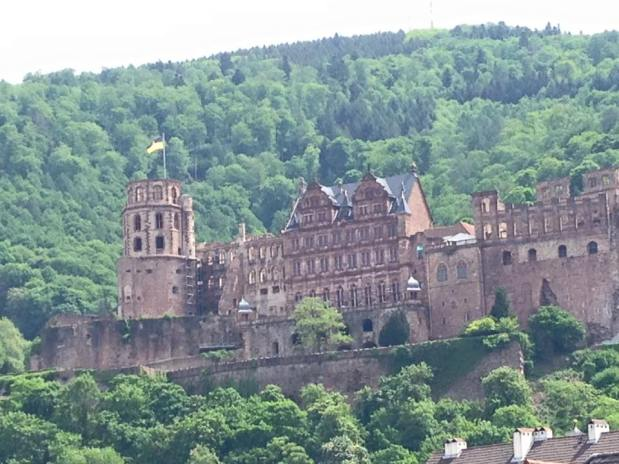 Rhine Cruise: Heidelberg